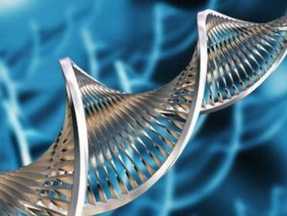 ماهي التطبيقات التى تشملها تقنية التكنولوجيا الحيوية؟