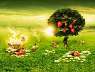 صفة أشجار الجنة