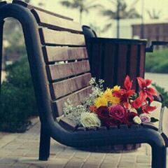 حلم على كرسي الانتظار