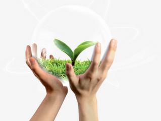علاقة الإنسان مع النبات