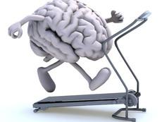ما هي رياضة العقل