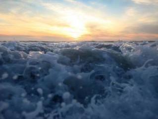 """""""صحراء""""... وسط المحيط الهادئ تخفي أسرارا مثيرة!"""