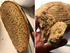 عالم فيزياء.. يصنع خُبزًا بخميرة عمرها 4500 سنة.. هل تجرؤ على تناوله
