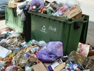 درجة الحياة الحادية عشر : النفايات