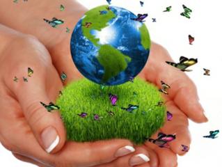 علاقة الانسان بمصادر الطاقه في الارض