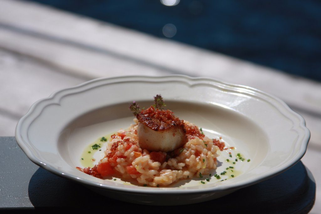 seared-scallops-on-rissoto-1024x682