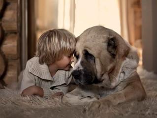 Los niños con mascotas tienen menos riesgo de padecer alergias y obesidad