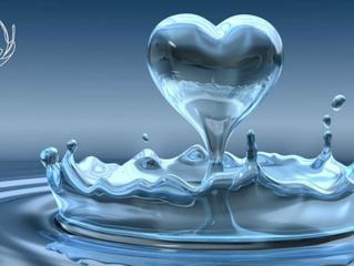 18 claves para vivir con el agua que realmente se necesita