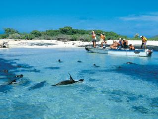 Galápagos, entre los sitios más bellos del mundo amenazados por el turismo, según BBC