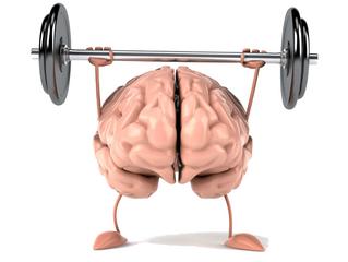 Fitness para el cerebro