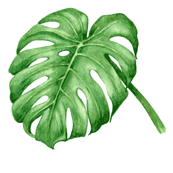 Tropical Leaves 7