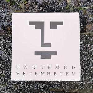 """UNDERMEDVETENHETEN 12"""" vinyl & LARP"""