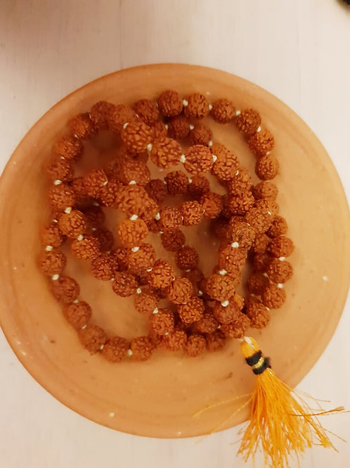 Genuine 5 Mukhi Rudarksh Mala in four size