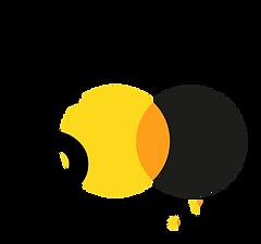 ft500 logo black.png