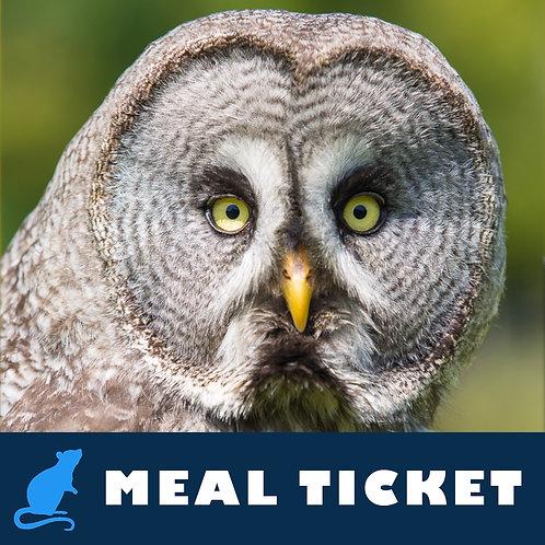 Meal Ticket - Oakley