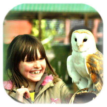Junior Owl Experience Voucher
