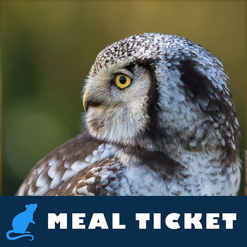 Meal Ticket - Luna