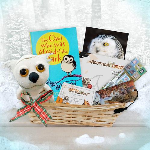 Junior Owl Adoption Gift Hamper