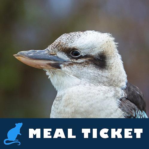 Meal Ticket - Rocko