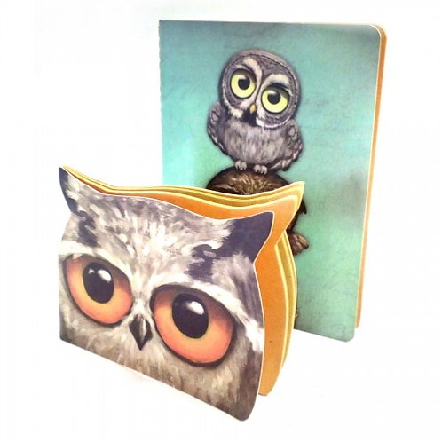 Books Owls Set of Two Notebooks