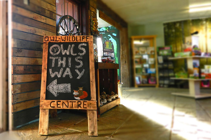 Opening Times and admission prices for Baytree Owl and Wildlife Centre