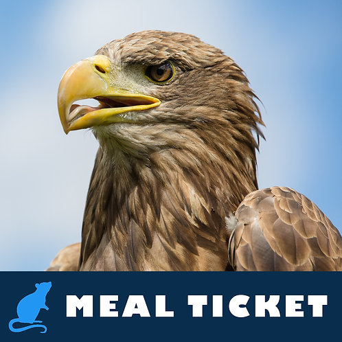 Meal Ticket - Odin
