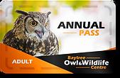 Adult pass.png