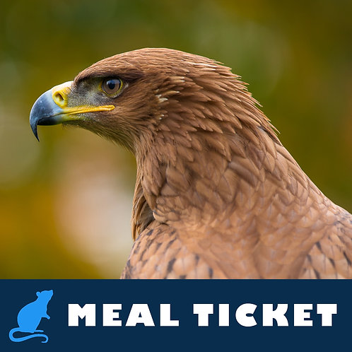 Meal Ticket - Dexter