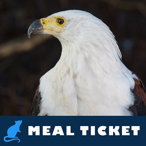 Meal Ticket - Aquarius