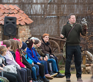 School attending a flying demonstration at Baytree Owl and Wildlife Centre