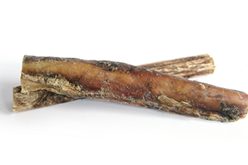 Bull Pizzle - 12cm Long