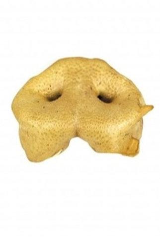 Honey Pigs Snout