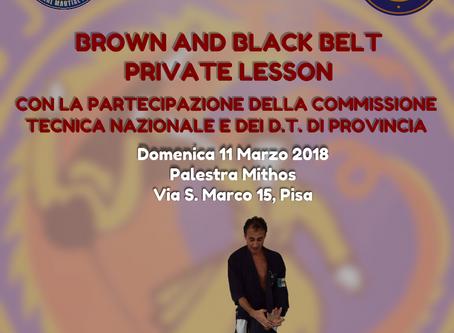 Lezione cinture nere e marroni candidati agli esami di cintura nera