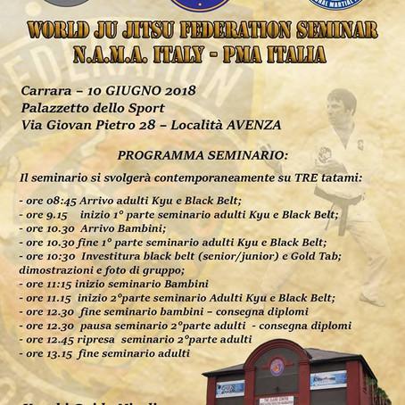 WORLD JU JITSU FEDERATION SEMINAR N.A.M.A. Italy - PMA Italia