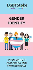 Gender Identity Guide for Professionals.
