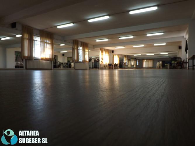 TARIMA 2.jpg