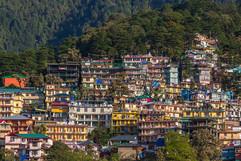 dharamsala-inde-3.jpg