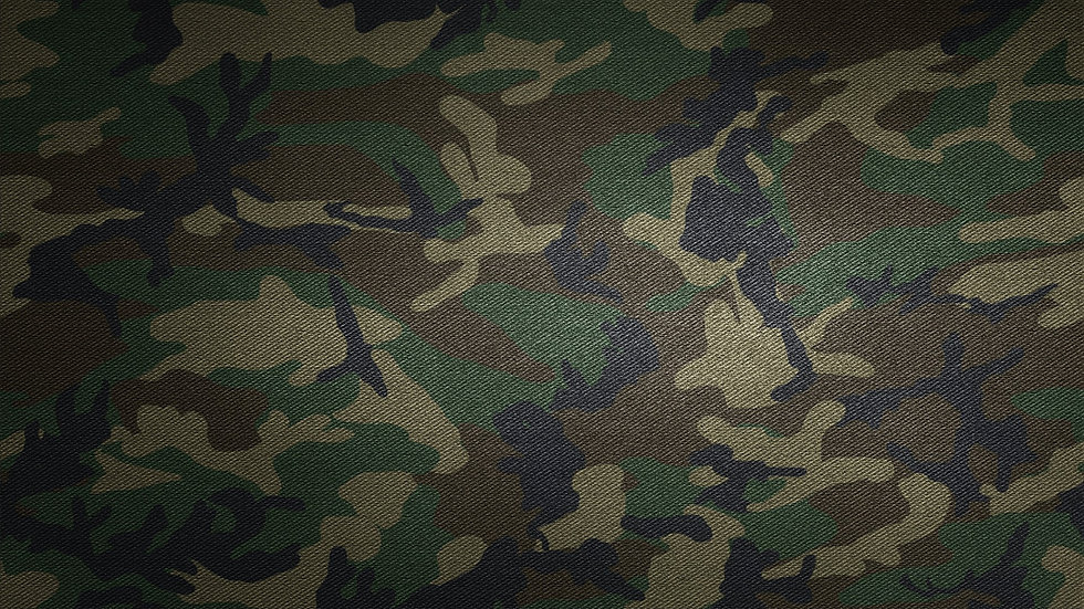 Home Military Military Camo Wallpaper_edited.jpg