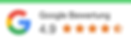 Google SEO Bewertungen.png