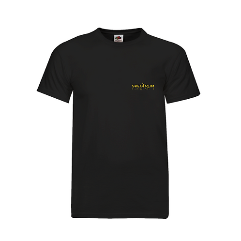 Embroidered Spectrum Kung Fu Training T-Shirt