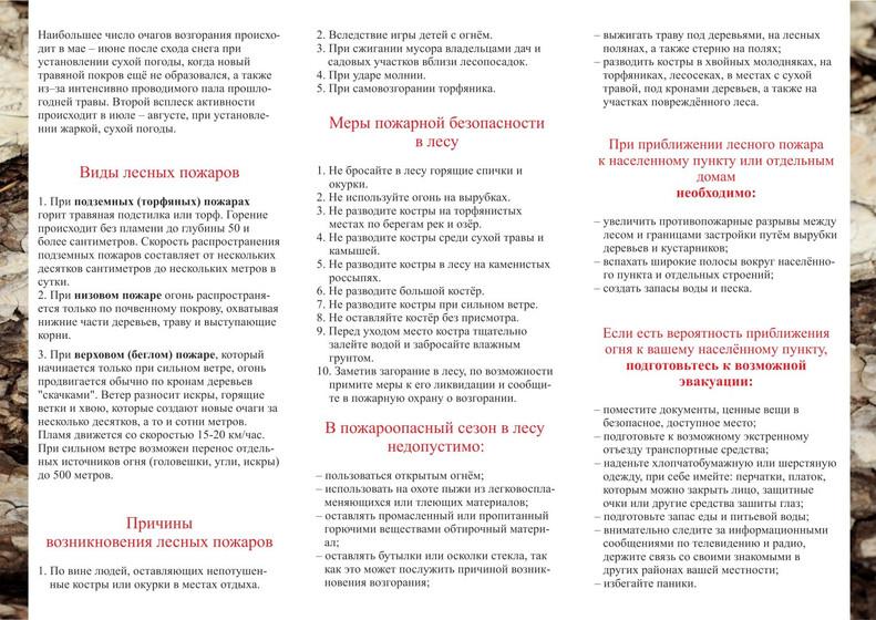pamjatka_mery_pozharnoj_bezopasnosti_v_l