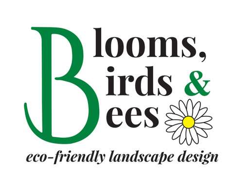 Welcome to the  Blooms Birds & Bees Blog!