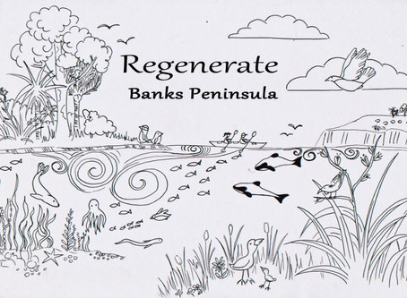 'Regenerate' launch a new Facebook Page