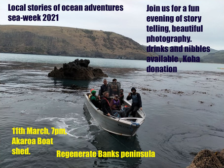 Local Stories of Ocean Adventures - Sea Week Event - March 11th