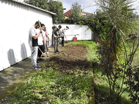 Building Valongo's Ecotopian Garden