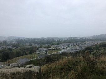 View of the neighbourhood below our lots