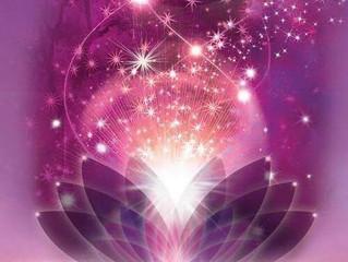 Lifeforce Flows Where Awareness Goes