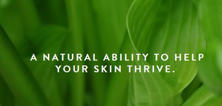 What Can the Use of Prebiotics and Probiotics Do To Promote Healthy Skin?