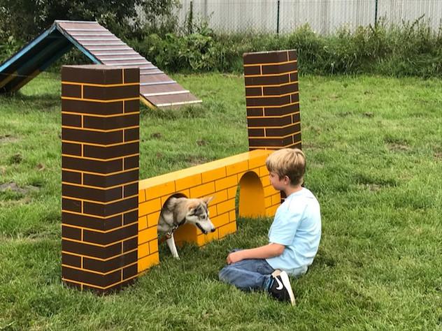 Ist ein Husky eigentlich ein Kinderhund?