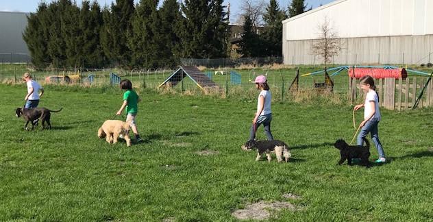 """Kinder, die mit Hunden arbeiten, sind einfach """"stärker"""""""